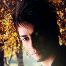 Arad Ariyaee – Shirin