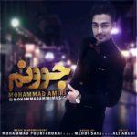 Mohammad Amiri – Joonam