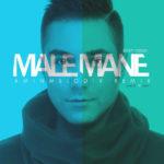 Saleh Rezaei – Male Mane ( Amin Melodix Remix )