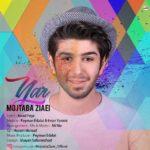 Mojtaba Ziaei – Yar Yar