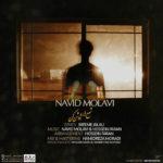 Navid Molavi – Shamaro Roshan Kon