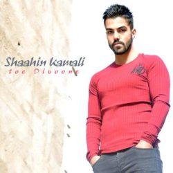 Shaahin Kamali - Toe Divoone