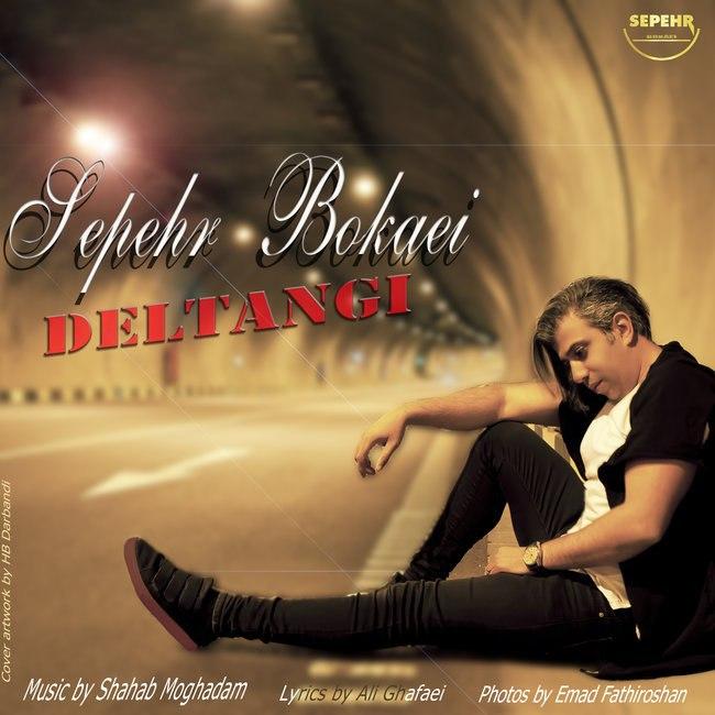 Sepehr Bokaei - Deltangi