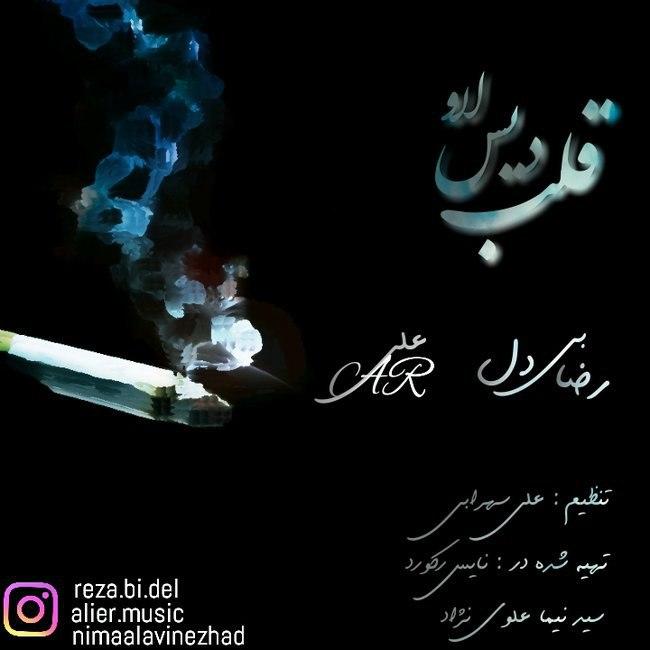 Reza Bidel - Ghalbe Diss Love