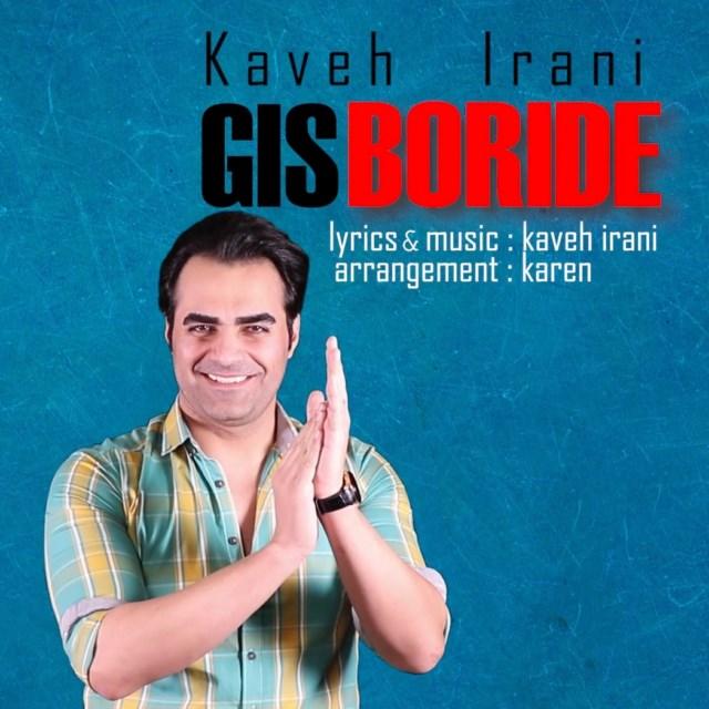 Kaveh Irani - Gis Boride