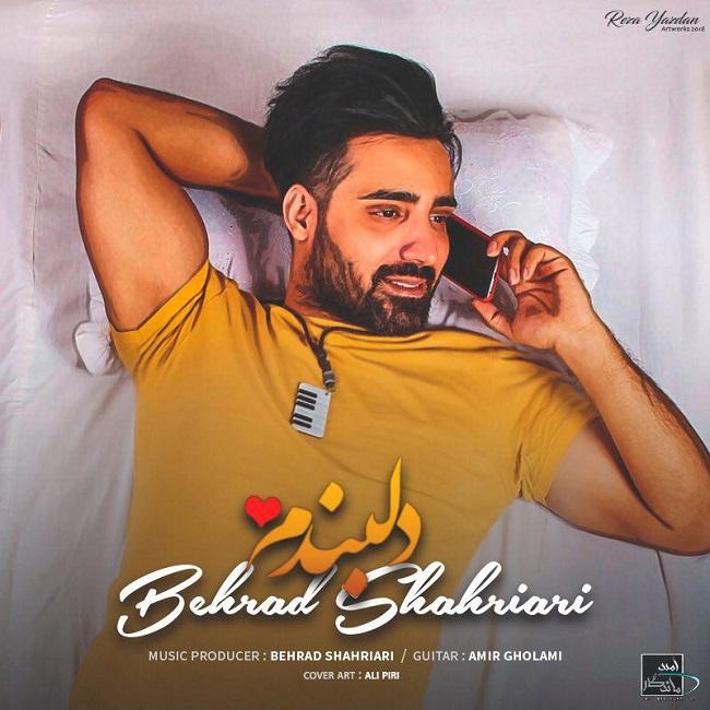 Behrad Shahriari - Delbandam