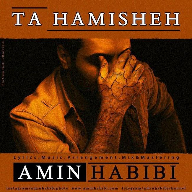 Amin Habibi - Ta Hamisheh