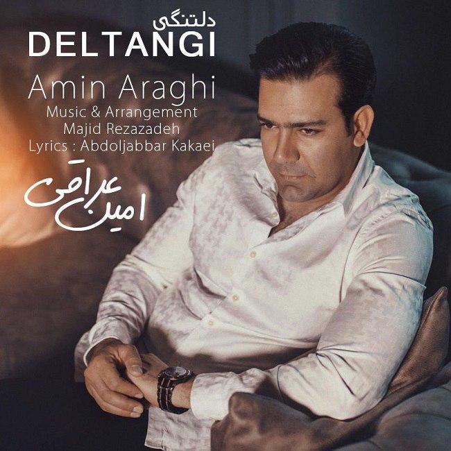 Amin Araghi - Deltangi