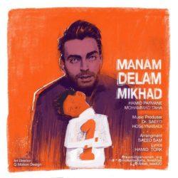 Hamid Parvaneh & Mohammad Taha - Manam Delam Mikhad