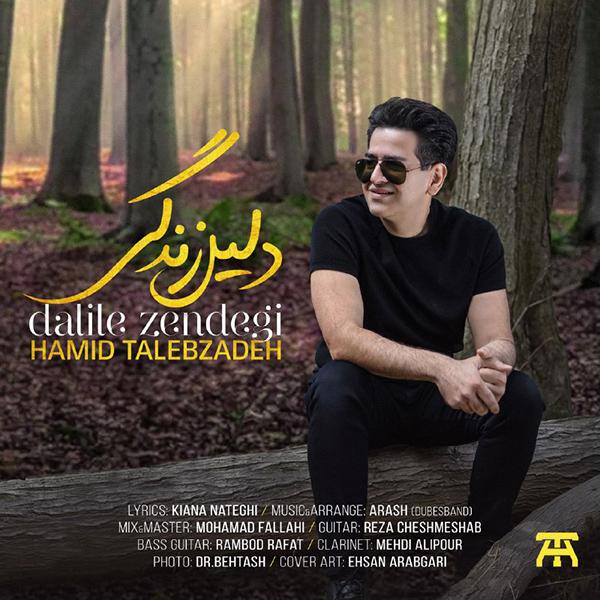 Hamid Talebzadeh - Dalile Zendegi