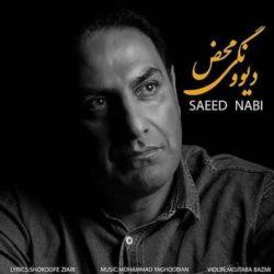 Saeed Nabi - Divoonegi Mahz