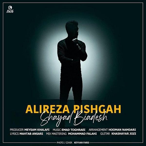 Alireza Pishgah - Shayad Biadesh