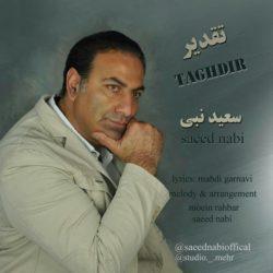 Saeed Nabi - Taghdir