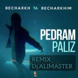 Pedram Paliz - Becharkh Ta Becharkhim ( Dj AliMaster Remix )