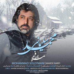 Mohammad Soleymani - Marde Barfi