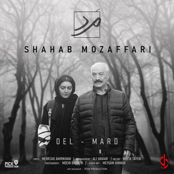 Shahab Mozaffari - Mard
