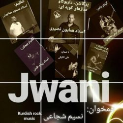 Ali Atabaki - Jwani