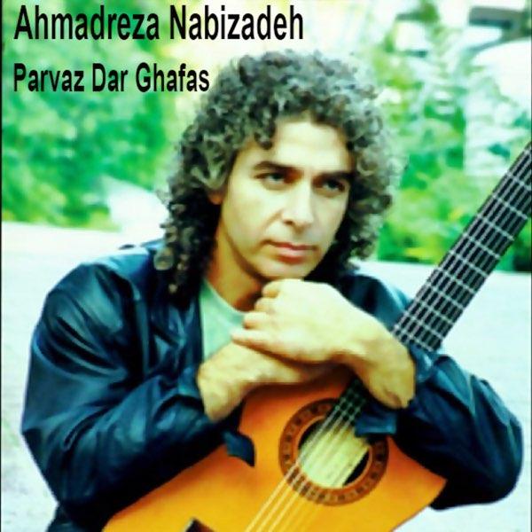 Ahmadreza Nabizadeh - Khalvate Saket