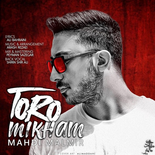 Mahdi Malmir - Toro Mikham