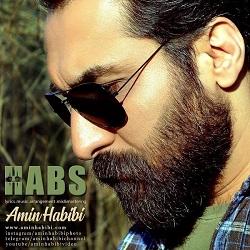 Amin Habibi - Habs
