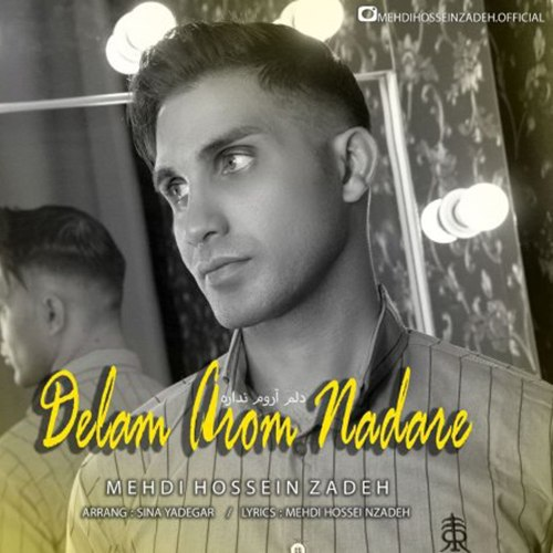 Mehdi Hosseinzadeh - Delam Aroom Nadare