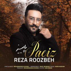 Reza Roozbeh - Paeiz