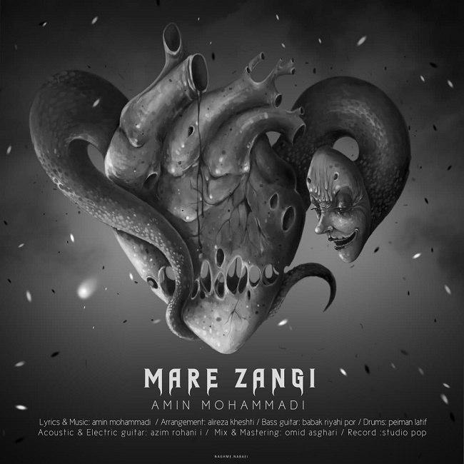 Amin Mohammadi - Mare Zangi