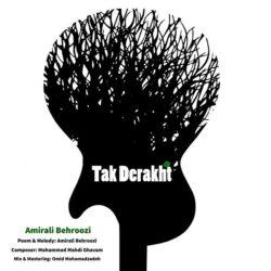 Amirali Behroozi - Tak Derakht